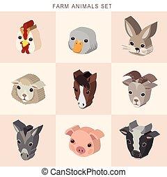 isométrique, ensemble, animaux, ferme, infographic, 3d