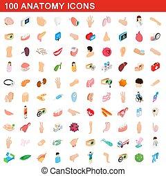 isométrique, icônes, ensemble, style, anatomie, 100, 3d