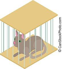 isométrique, style, chat, icône, cage, 3d