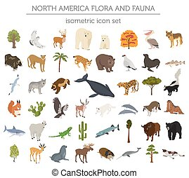 Isometric 3d North America flora and fauna elements....