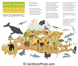 Isometric 3d North America flora and fauna map elements....