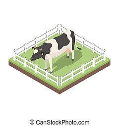 Isometric 3d vector illustration of cow.