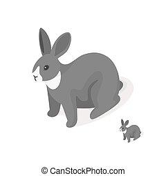 isometric, 3d, vetorial, ilustração, de, cinzento, rabbit.