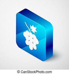Isometric Grape fruit icon isolated on grey background. Blue square button. Vector