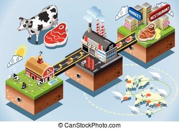 Isometric Infographic Beef Distribution Chain - Meet...