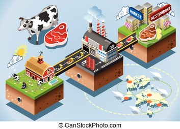 Isometric Infographic Beef Distribution Chain - Meet...