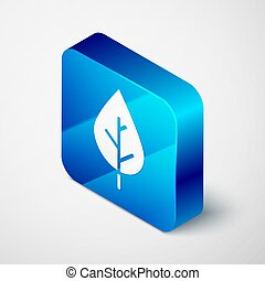 Isometric Leaf icon isolated on grey background. Fresh natural product symbol. Blue square button. Vector