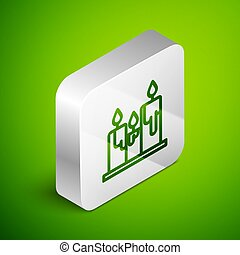 Isometric line Burning candles icon isolated on green background. Cylindrical candle stick with burning flame. Silver square button. Vector Illustration