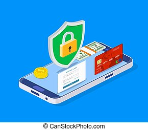 Isometric online payment protection system.