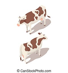 isometric, vetorial, ilustração, vaca, 3d