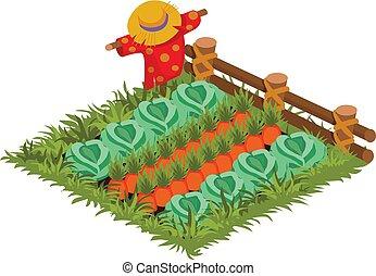 isometrico, giardino, carota, letto, piantato, verdura, cavolo, cartone animato