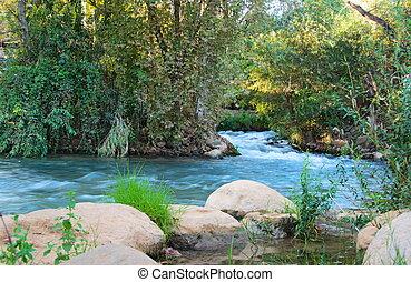 israël, het voeden, noorden, hazbani, -, een, rivier, ...