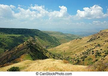 israelí, parque nacional, hights, fortaleza, gamla, golan