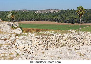 israel:, 場所, 聖書, megiddo