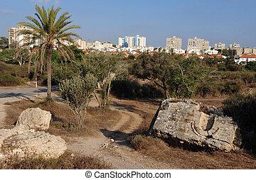 Israel - Ashkelon - The skyline of Ashkelon, Israel