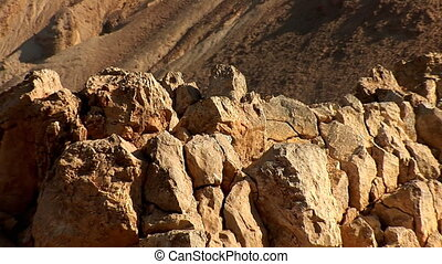 Israel desert 7