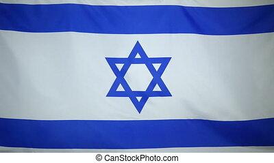 Israel Flag real fabric close up - Textile flag of Israel...