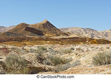 israel, paisagem deserto