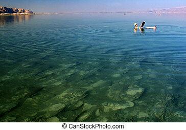 israel, viaje, -, muerto, fotos, mar