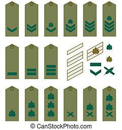 Israeli Army insignia