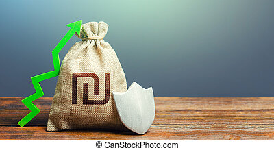 Israeli shekel money bag with a shield and a green arrow up...