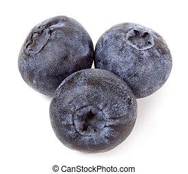 Issolated blueberry on white background