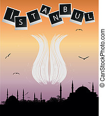 Istanbul silhouette and abstract tu