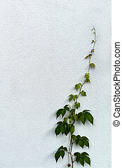 it grows upward. photo icon for recovery and upward.