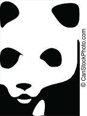 panda or bear