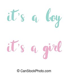 It s A Boy, girl. Pink and blue hand drawn quote set for...