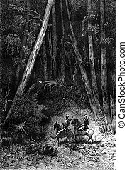 It was a tall forest, vintage engraving. - It was a tall ...