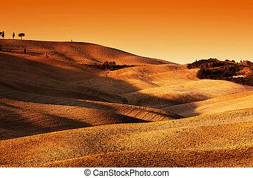 Italia, colinas, pintoresco, Toscana, luces, sombras, paisaje, ocaso