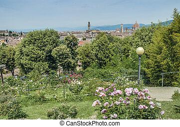 italia, (the, garden), rosa, giardino, florencia, delle