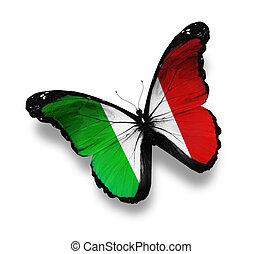 italiaanse dundoek, witte , vrijstaand, vlinder