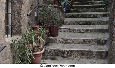 italian entrance with the stone stairway and flower pots