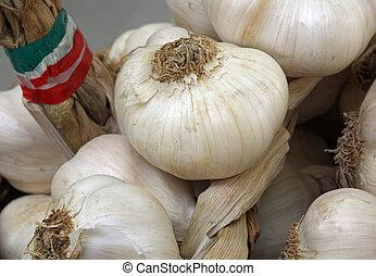 italian garlic clove for sale at market