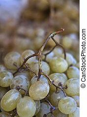 italian grape fruit