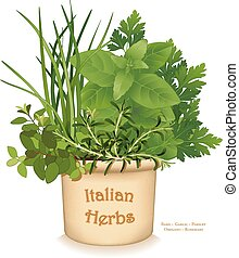 Italian Herb Garden, traditional flavors for Mediterranean cuisine, left to right: Oregano, Garlic Chives, Sweet Basil, Flat Leaf Parsley, Rosemary, in clay flowerpot crock, isolated on white background. EPS8 compatible.