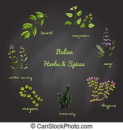 Italian herbs and spices