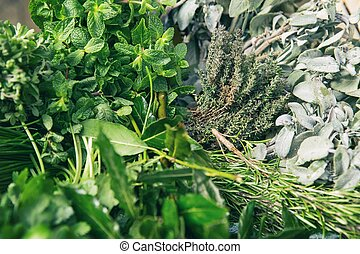 Italian herbs - Mix of fresh herbs background