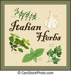 Italian Herbs, Mosaic Border - Italian herbs, featuring...