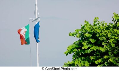 Italian naval ensign, EU flag. Flags, tree and sky....