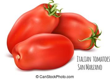 Italian plum tomatoes San Marzano. Tomato with green stem. ...