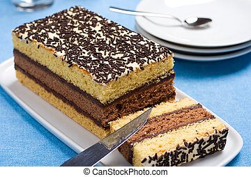 Italian sponge cake with chocolate filling on a white ...