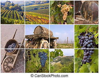 italian vineyard - collage of grapes, vineyard, old barrels ...