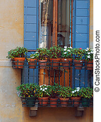 Italian window with wooden shutters