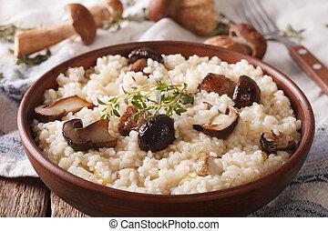 italiano, risotto, con, funghi selvaggi, primo piano, su,...