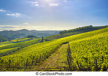 italie, chianti, panorama, toscane, vignoble, sunset., radda