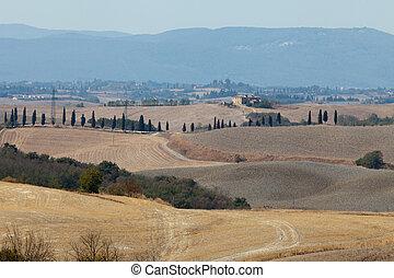 italien, -, tuscany., kreta, senesi, landschaftsbild