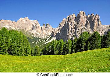 Italy Alps - Dolomite peaks, Rosengarten,Val di Fassa, Italy...